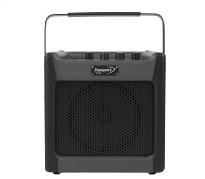 Fender Passport Mini1