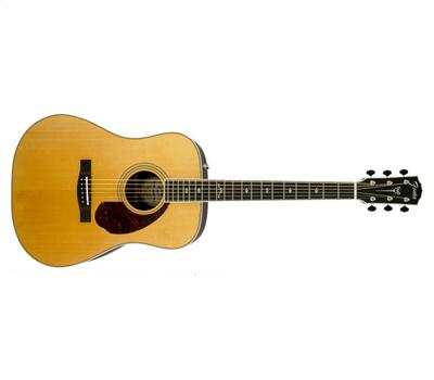 Fender Paramount PM-1 Deluxe Dreadnought Natural1