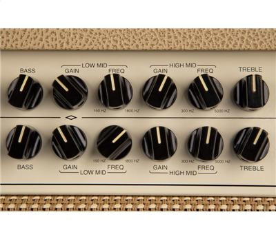 Mesa Boogie Rosette 300 2:8  Two:Eight Combo4