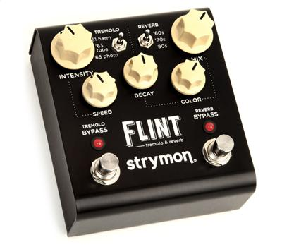 Strymon Flint1