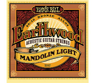 Ernie Ball 2067 Earthwood Bronze Light .009-.034